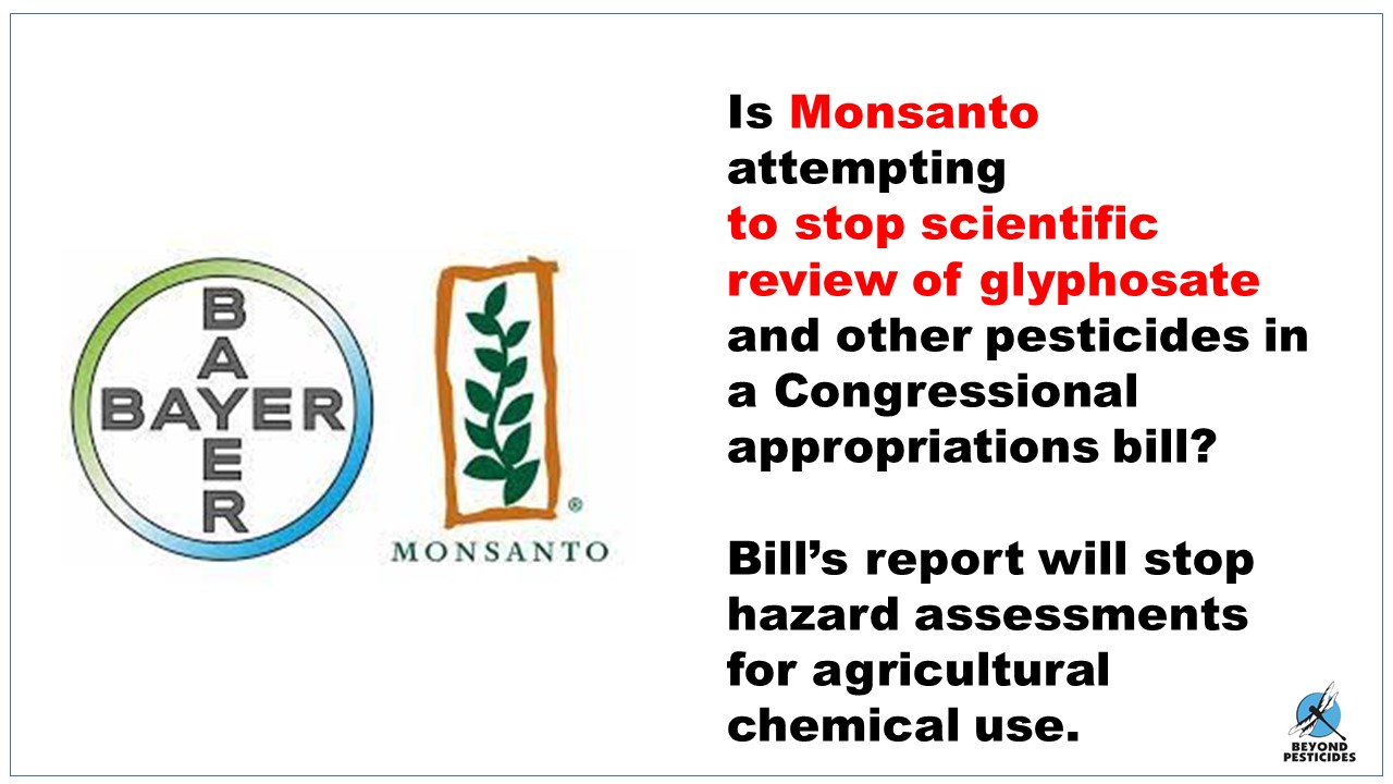 monsanto attempts to balance stakeholder interests summary